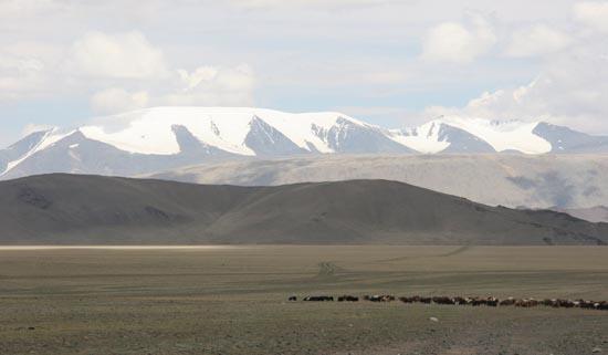 '황금의 산'이란 의미를 지닌 알타이. 눈 덮인 알타이 산 아래로 드넓은 초원이 펼쳐져 있다. 이 초원이 인류에게 기여한 가장 보람된 일은 동서문명의 맥을 이어주고 소통시킨 것이다.